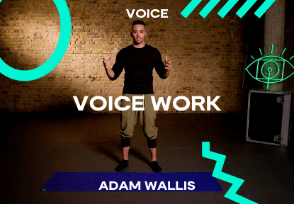 voice work course